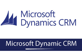 Microsoft Dynamic CRM Online Training