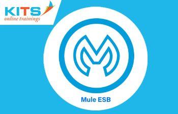 Mule ESB Online Training