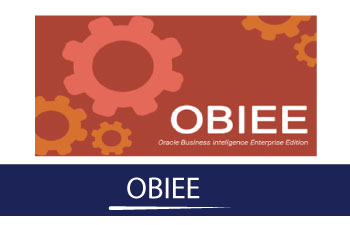 OBIEE Online Training
