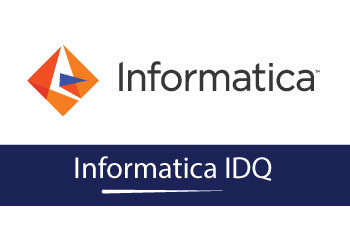 Informatic IDQ Online  Training